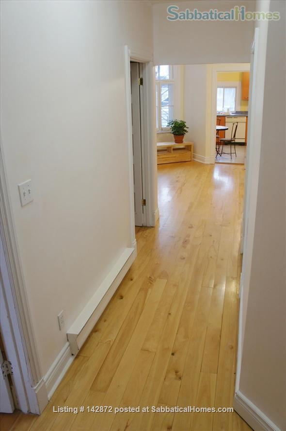 SUNNY 3 BDR - PLATEAU MT-ROYAL / MILE-END - LAURIER METRO Home Rental in Montreal, Quebec, Canada 2