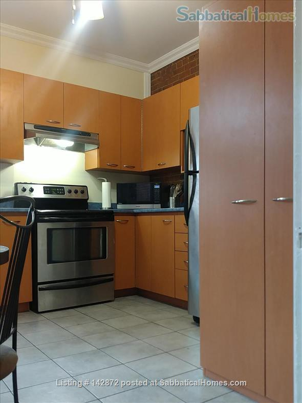 SUNNY 3 BDR - PLATEAU MT-ROYAL / MILE-END - LAURIER METRO Home Rental in Montreal, Quebec, Canada 3