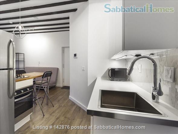 Renovated Modern West Harlem Moments from Columbia and City Uni Home Rental in New York, New York, United States 4