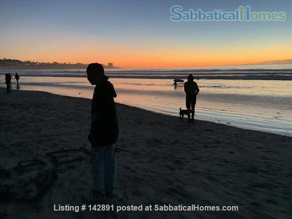 UCSD 2 bedroom La Jolla Available September 1, 2021 to June 30 2022 Home Rental in San Diego, California, United States 9