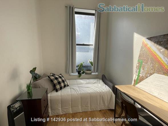 Sunny Room in Plant filled 2/1  Home Rental in Clinton Hill, New York, United States 2