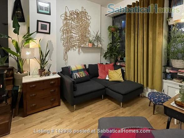 Sunny Room in Plant filled 2/1  Home Rental in Clinton Hill, New York, United States 7