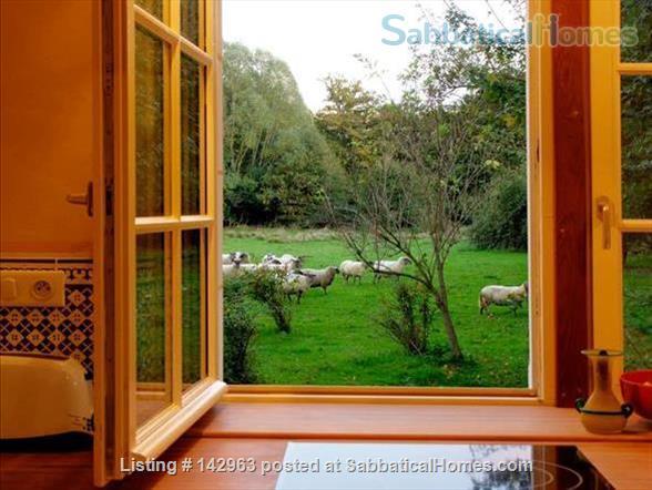 Beautiful cottage on a river mill estate Home Rental in Beaumont-Village, Centre-Val de Loire, France 2