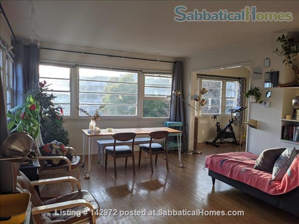Spacious, sunny flat near UCLA Home Rental in Los Angeles, California, United States 1