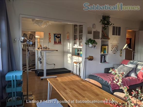Spacious, sunny flat near UCLA Home Rental in Los Angeles, California, United States 2