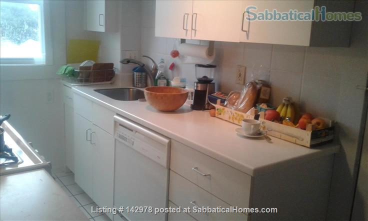 2BR Penthouse Harvard Square Home Rental in Cambridge, Massachusetts, United States 4