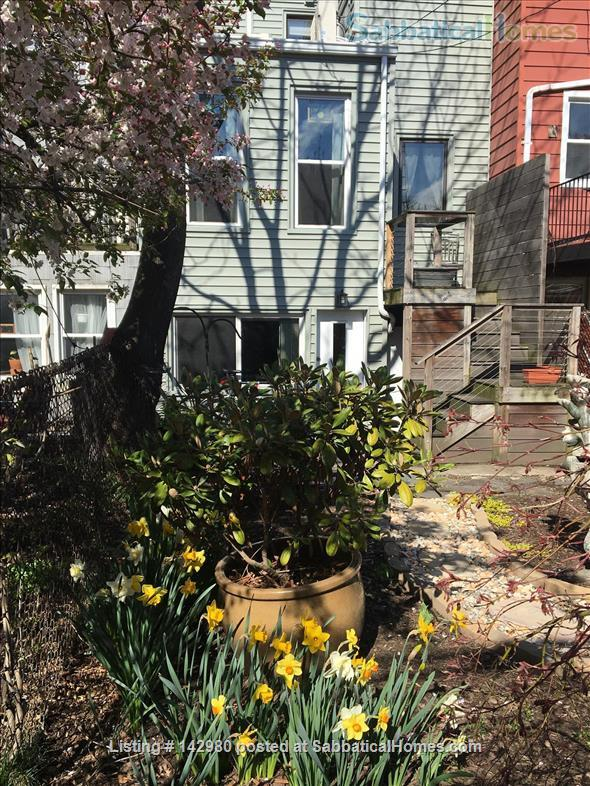 Urban Oasis Jr. Home Rental in Sunset Park, New York, United States 0