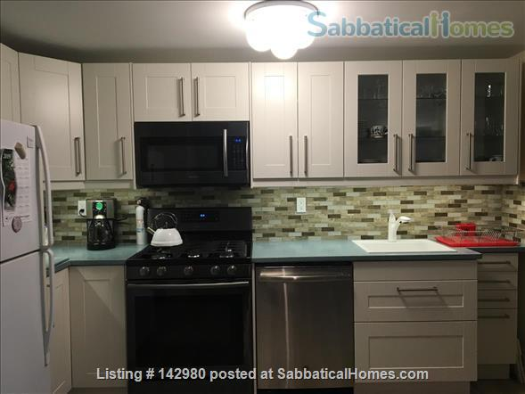 Urban Oasis Jr. Home Rental in Sunset Park, New York, United States 3