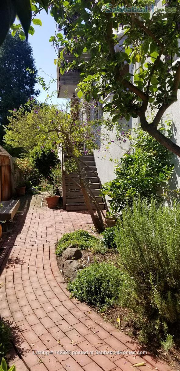 North Berkeley spacious light-filled home 1/2 mile from UC Berkeley  Home Rental in Berkeley, California, United States 0
