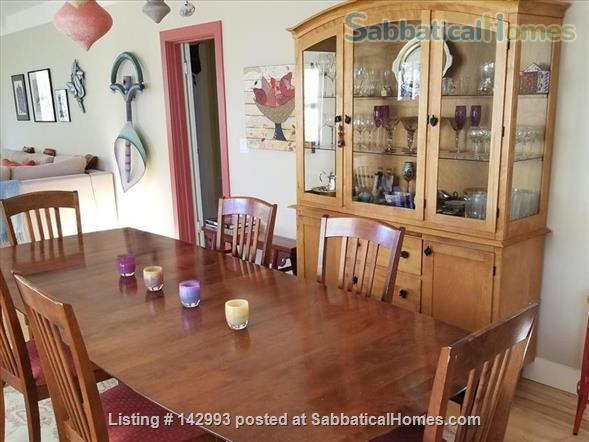 North Berkeley spacious light-filled home 1/2 mile from UC Berkeley  Home Rental in Berkeley, California, United States 2