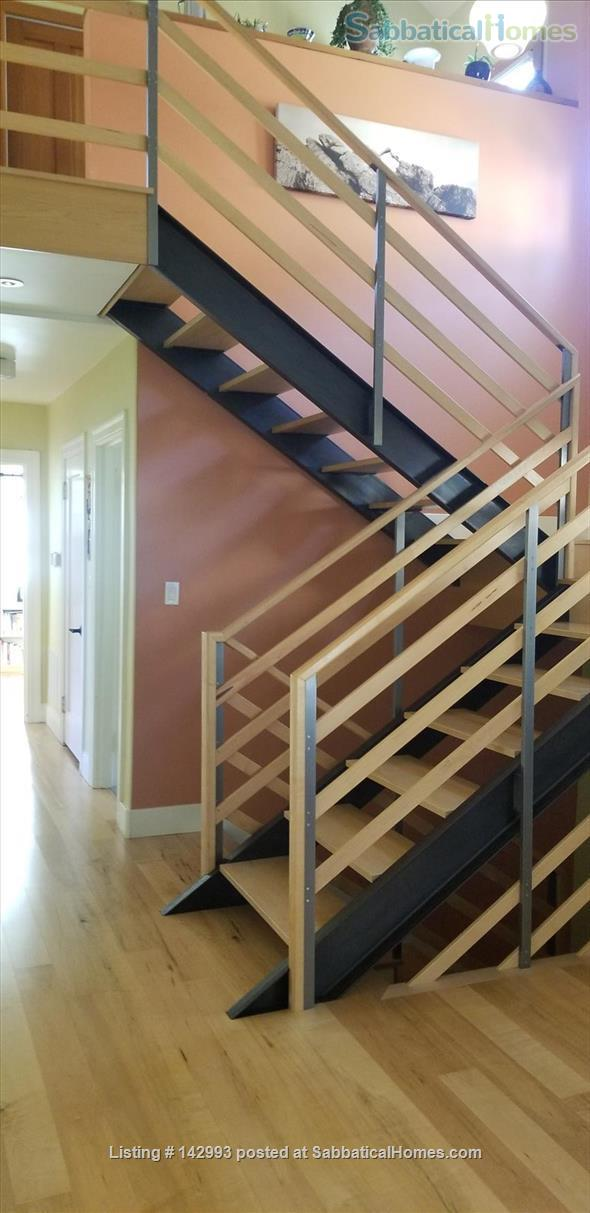 North Berkeley spacious light-filled home 1/2 mile from UC Berkeley  Home Rental in Berkeley, California, United States 4