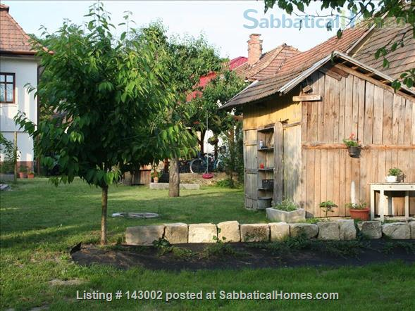 Charming country home close to Budapest Home Rental in Zsámbék, , Hungary 8