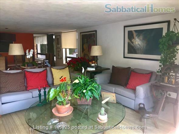 Great apartment for rent in fantastic residential area in Mexico City Home Rental in Mexico City, CDMX, Mexico 1