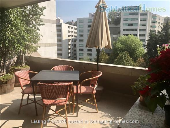 Great apartment for rent in fantastic residential area in Mexico City Home Rental in Mexico City, CDMX, Mexico 2