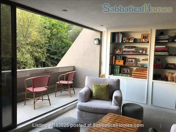 Great apartment for rent in fantastic residential area in Mexico City Home Rental in Mexico City, CDMX, Mexico 4