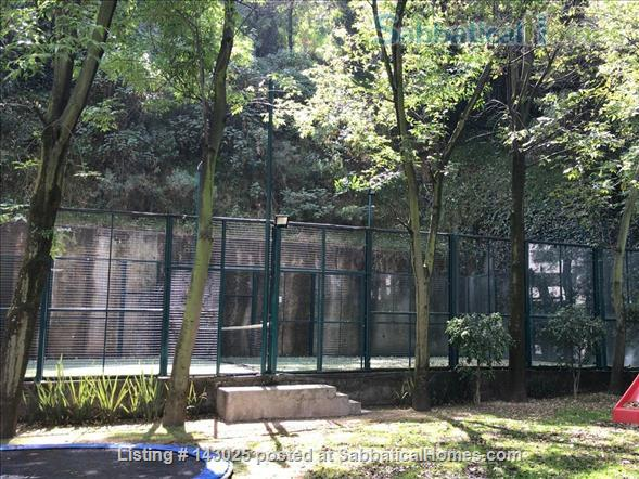 Great apartment for rent in fantastic residential area in Mexico City Home Rental in Mexico City, CDMX, Mexico 7
