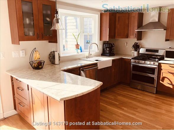 Furnished Private Family home in Newton Center 4 bed/2.5 bath home. Heated Inground Pool.  Oasis in the City.  Close to Harvard, Boston Universities and Longwood Medical Area. Home Rental in Newton, Massachusetts, United States 0