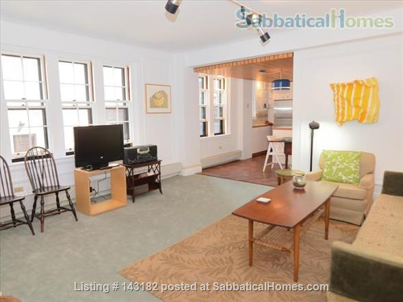 Harvard Square Furnished One Bedroom Home Rental in Cambridge, Massachusetts, United States 4