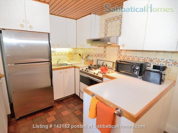 Harvard Square Furnished One Bedroom Home Rental in Cambridge, Massachusetts, United States 6