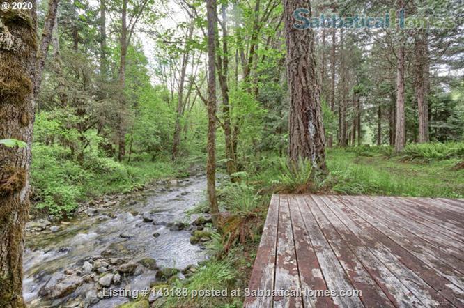 Blissful Solitude - Sweet Cottage - Writer's Retreat, Fantastic Photography, Wine Tasters Weekend Home Rental in Azalea, Oregon, United States 5