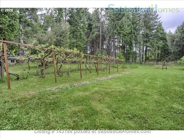 Blissful Solitude - Sweet Cottage - Writer's Retreat, Fantastic Photography, Wine Tasters Weekend Home Rental in Azalea, Oregon, United States 7