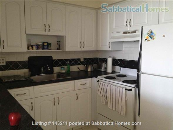 2 Bedrooms Flat in Miami 100 m2 Park View Island Home Rental in Miami Beach, Florida, United States 3