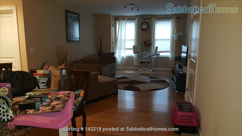 one bedroom furnished Home Rental in Boston, Massachusetts, United States 1