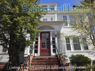 Spacious, light-filled, second floor apartment in Cambridge Home Rental in Cambridge, Massachusetts, United States 1