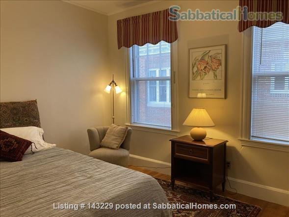 Spacious, light-filled, second floor apartment in Cambridge Home Rental in Cambridge, Massachusetts, United States 6