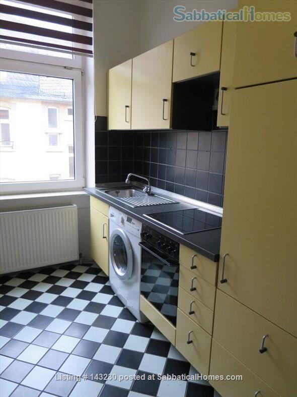 Spacious 1 (or 2) bedroom apartment  Home Rental in Frankfurt am Main, Hessen, Germany 3