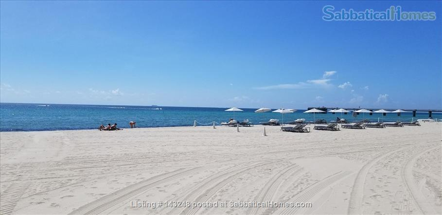 Beach Condo in Fort Lauderdale Home Rental in Fort Lauderdale, Florida, United States 7