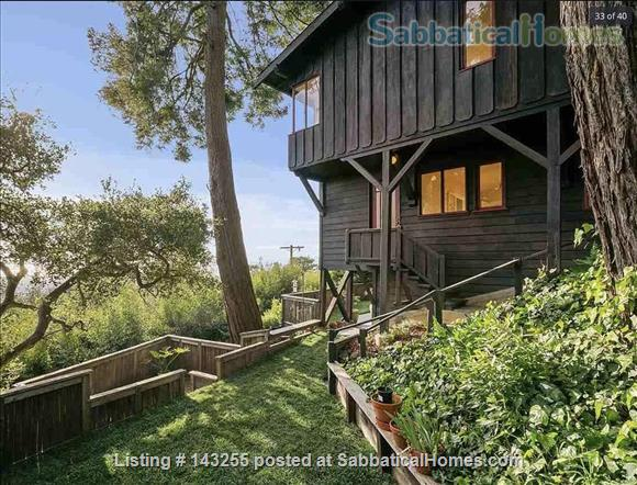 Beautiful light-filled house with Bay views near Rose Garden, walkable to UCB, North Berkeley restaurants, cafés, stores, farmers market Home Rental in Berkeley, California, United States 9