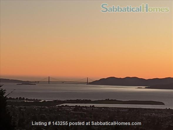 Beautiful light-filled house with Bay views near Rose Garden, walkable to UCB, North Berkeley restaurants, cafés, stores, farmers market Home Rental in Berkeley, California, United States 1