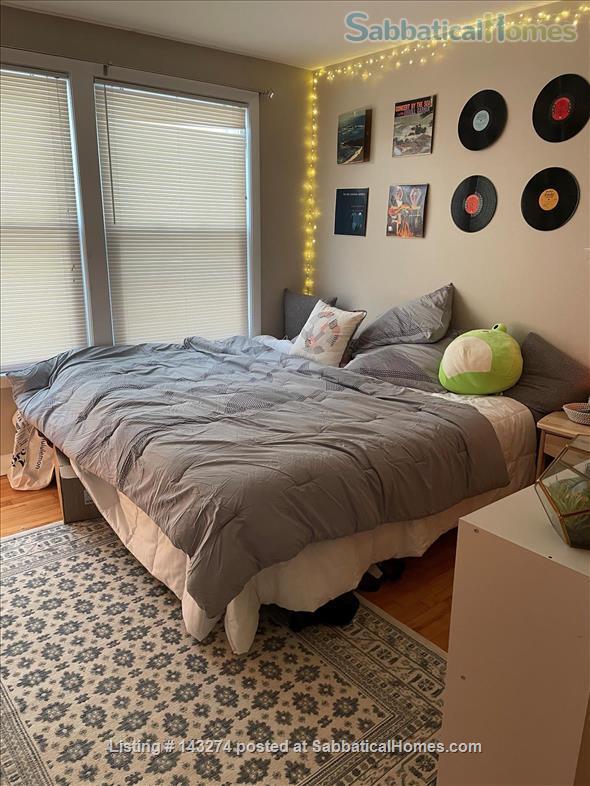 Cozy Home Near Bowdoin College Home Rental in Brunswick, Maine, United States 7