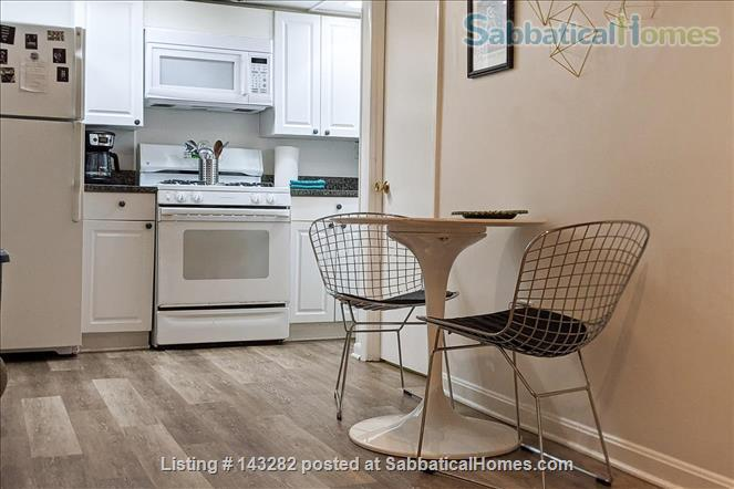 Retro basement suite with office Home Rental in Silver Spring, Maryland, United States 2