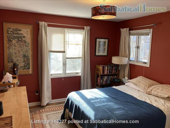 Beautiful big sunny 1BR with large courtyard; Walk to  central campus Home Rental in Ann Arbor, Michigan, United States 1