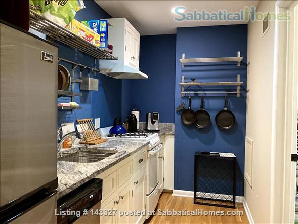 Beautiful big sunny 1BR with large courtyard; Walk to  central campus Home Rental in Ann Arbor, Michigan, United States 4