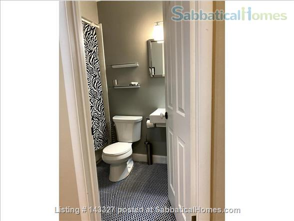 Beautiful big sunny 1BR with large courtyard; Walk to  central campus Home Rental in Ann Arbor, Michigan, United States 5