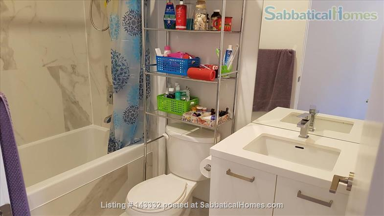 Sunny 2 bedroom apartment in downtown Toronto (price includes all utilities!) Home Rental in Toronto, Ontario, Canada 8