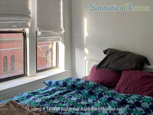 Sweet 1 bedroom in Park Slope Home Rental in Park Slope, New York, United States 0