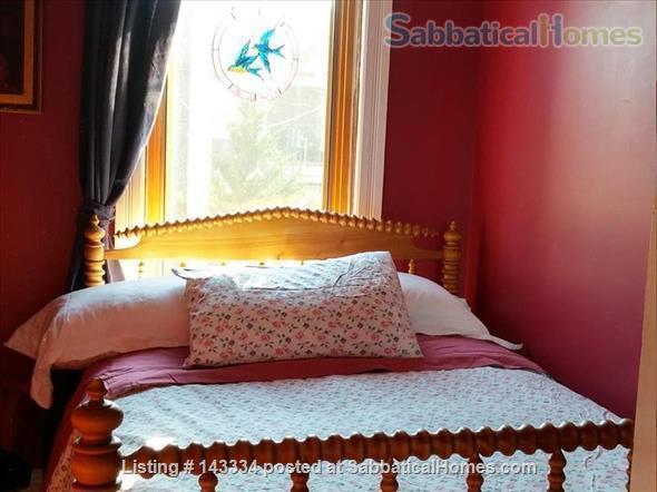 Stunning, Serene Oasis in the City:  3 Bedroom Gem Home Rental in Toronto, Ontario, Canada 3