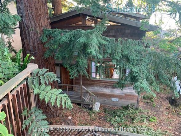 a unique cottage in berkeley for rent  Home Rental in Berkeley, California, United States 8
