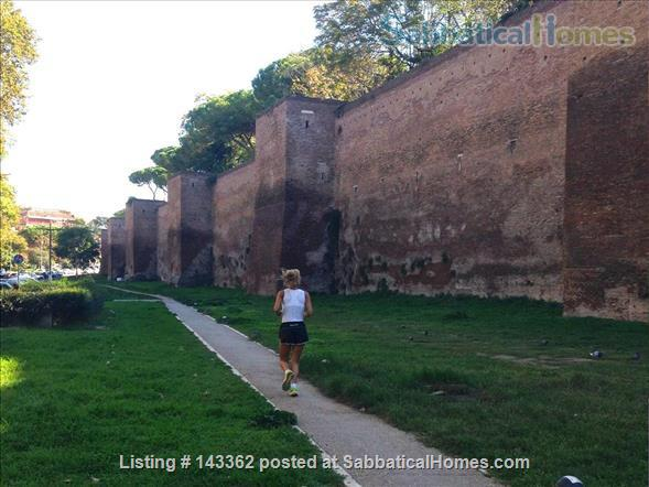 Design apt 45 sqm city center and  Rome Archeological park Home Rental in Rome, Lazio, Italy 8