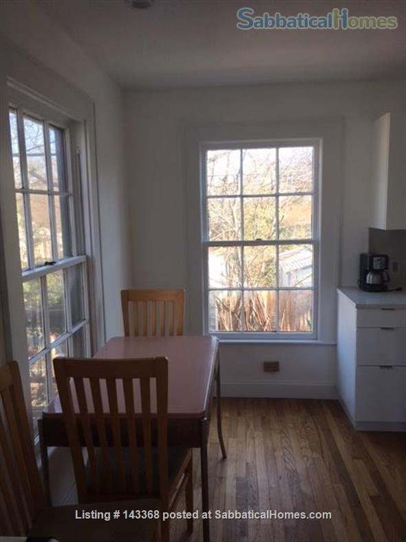"""Apartment in the Trees"" close to UT, Dell and Seton Medical  Home Rental in Austin, Texas, United States 3"