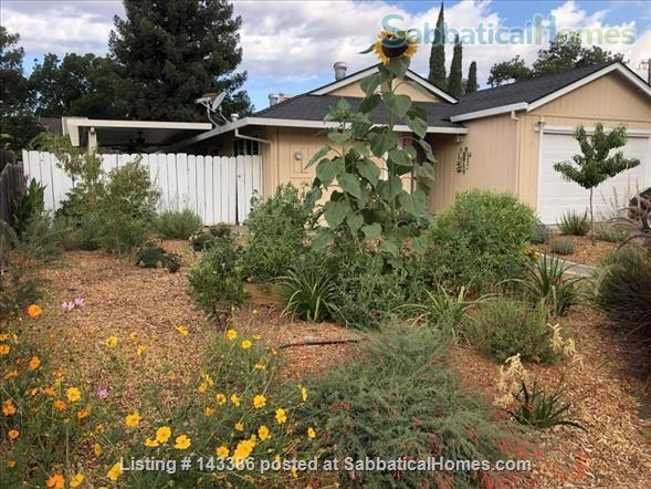 Cute 3 Bedroom, 2 Bath Furnished Home in Winters Home Rental in Winters, California, United States 1