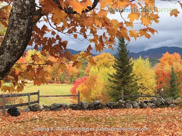 Cozy Cottage Apt on Conservation Land Near White Mountains Home Rental in Tamworth, New Hampshire, United States 1