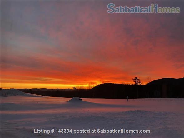 Cozy Cottage Apt on Conservation Land Near White Mountains Home Rental in Tamworth, New Hampshire, United States 6
