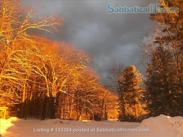Cozy Cottage Apt on Conservation Land Near White Mountains Home Rental in Tamworth, New Hampshire, United States 7