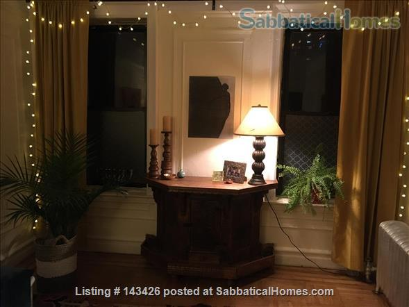 ONLY 4 SPRING '22: Spacious One Bedroom in Pre-War Building Next to Botanical Garden Home Rental in Brooklyn, New York, United States 3