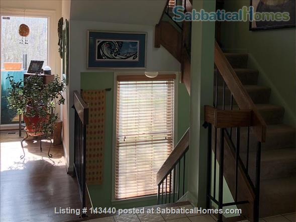 Peaceful Sunny Suburban Washington DC Escape - close to Metro Home Rental in Silver Spring, Maryland, United States 2